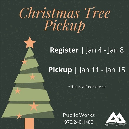 Annual Christmas Tree Collection Service Begins January 4