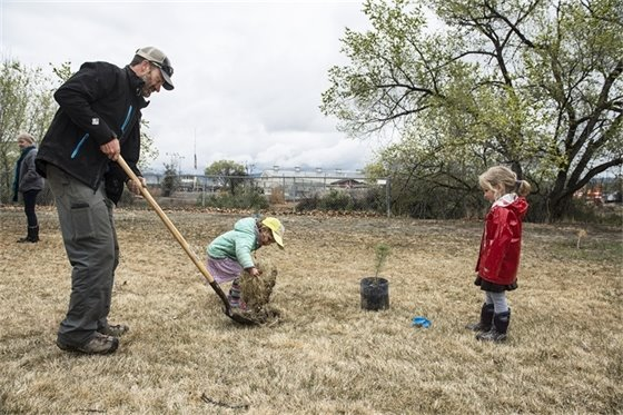 Community's Urban Forest Growing to New Heights